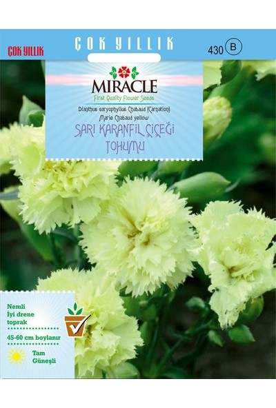 Miracle Tohum Miracle Marie Chabaud Sarı Karanfil Çiçeği Tohumu (190 tohum)