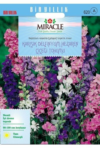 Miracle Tohum Miracle Hezaren Çiçeği (Delphinium) Süvari Mahmuzu Çiçeği (450 tohum)