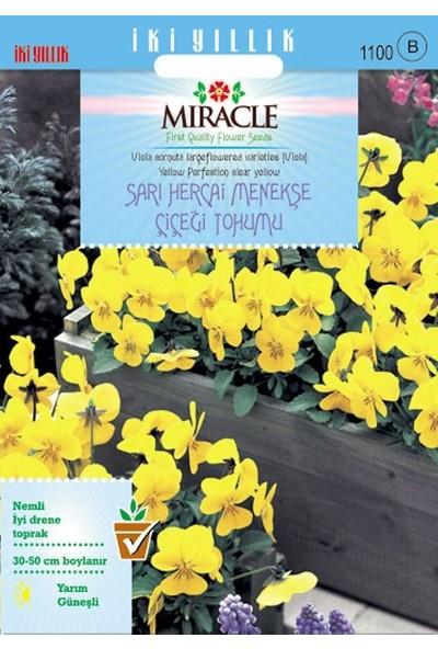 Miracle Tohum Miracle Sarı Hercai Dev Menekşe Çiçeği Tohumu (150 tohum)