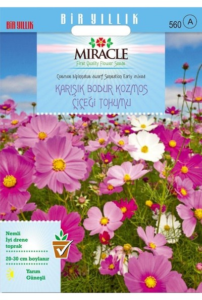 Miracle Tohum Miracle Karışık Renkli Bodur Cosmos (Kozmos) Çiçeği Tohumu(50 tohum)