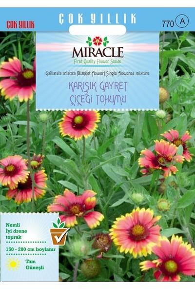 Miracle Tohum Miracle Karışık Gayret Çiçeği (Giallardia Mix) Tohumu (190 tohum)