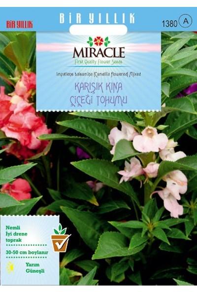 Miracle Tohum Miracle Balsamina Karışık Renkli Kına Çiçeği Tohumu (150 tohum)