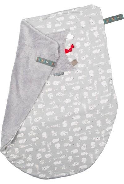 Cheeky Chompers 301 Chewy Co Cheeky Blanket