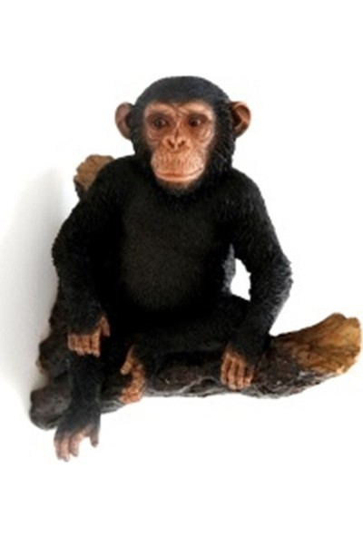 Giftpoint Gp-1702 Chımpanzee Sıttıng Branches Hangıng