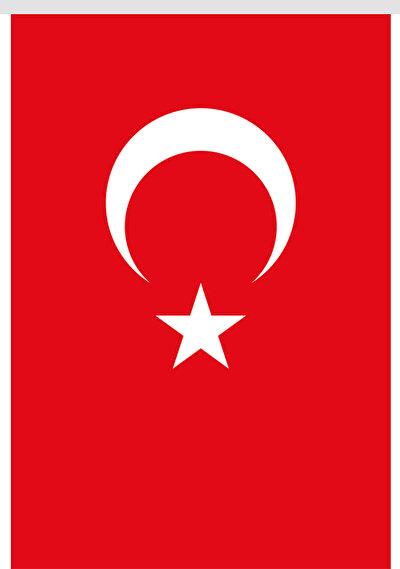 Nope Türk Bayrağı Stor Perde 100X150 Cm