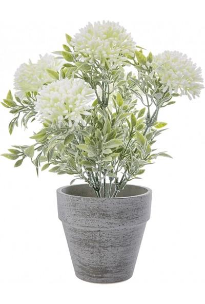 Karaca Home Cream Lavender Pot 29 cm
