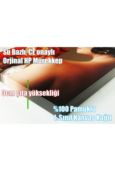 Caddeko Zb10 Aşık Atlar Kanvas Tablo 70 x 100 cm