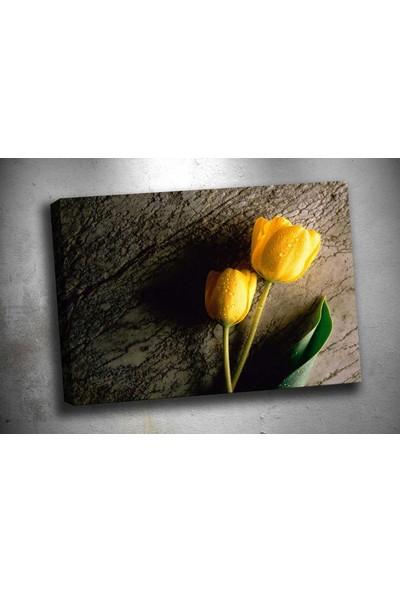Caddeko Cic109 Çiçek Kanvas Tablo 70 x 100 cm