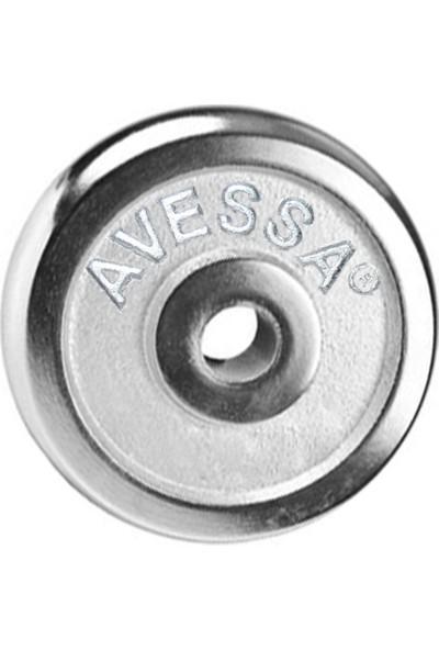 Avessa Krom Kaplama Ağırlık Plakası 0,5 kg