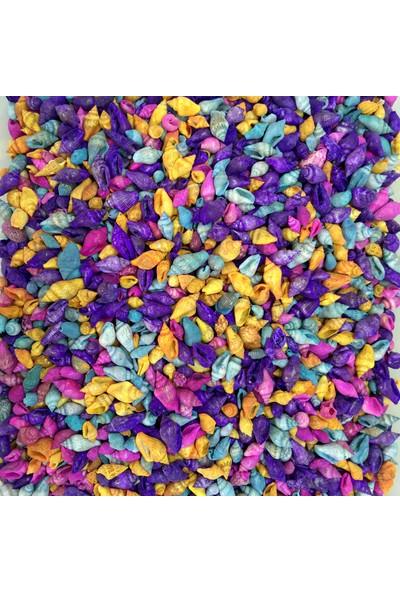 Turkuaz Deniz Kabuğu 100 Gram Karışık Renkli Minik Deniz Kabukları Nassa Shell 1 - 1,5 cm