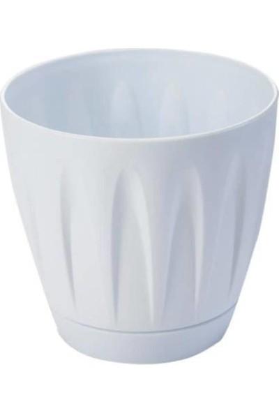Yalova Fidan Market Beyaz Papatya Saksı 22 Litre