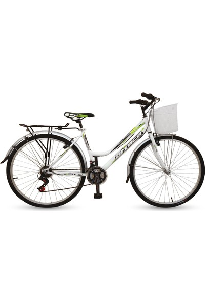 Arnica PVC Çamurluklu Bagajlı Bisiklet