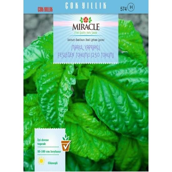 Miracle Tohum Miracle Marul Yapraklı Fesleğen Tohumu (250 tohum)