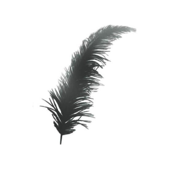 Elite Tüy 100 Adet Süsleme Tüyü Siyah 12 cm