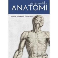 Sistematik Anatomi