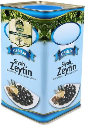 Oleika Gemlik Trilye Tipi Doğal Fermente Yağlı Sele Zeytin Orta Tuzlu Büyük Boy 5 kg (Net 4000 gr)