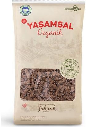 Yaşamsal Organik Boncuk Makarna 500 gr