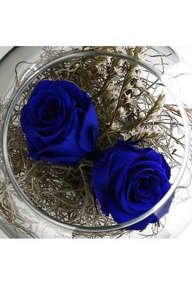 Çanakbahçe Çift K.Mavi Solmayan Gül