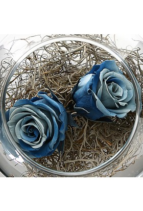 Çanakbahçe Blue Çift Solmayan Gül