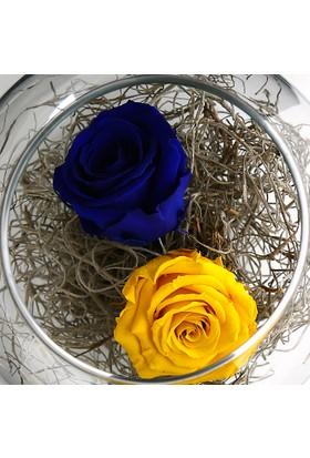 Çanakbahçe Solmayan Gül Sarı Lacivert