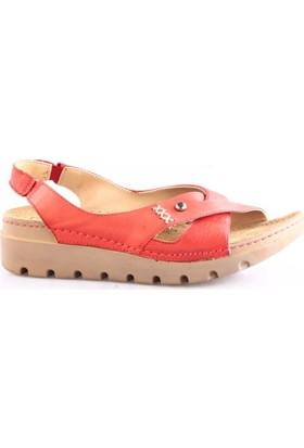 Pierre Cardin 1380-3630 Kadın Klasik Sandalet Kırmızı