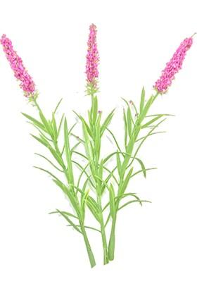 Teraryumal Teraryum Malzemeleri Küçük Yapay Çiçekler Model 5