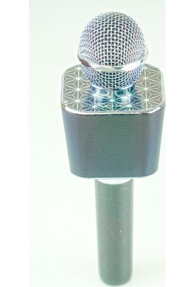Paleon Wster Ws-1688 Siyah Karaoke Mikrofon Hoparlör Mp3