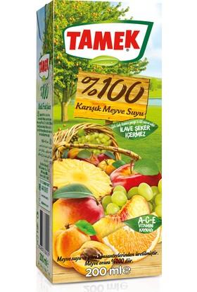 Tamek %100 Karışık Meyve Suyu 200 cc