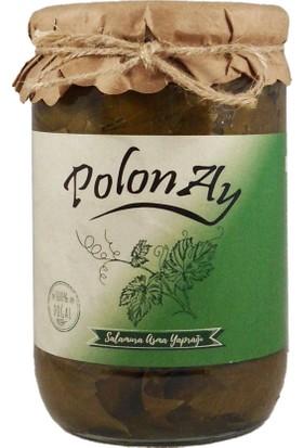 Polonay Salamura Asma Yaprağı 700 gr