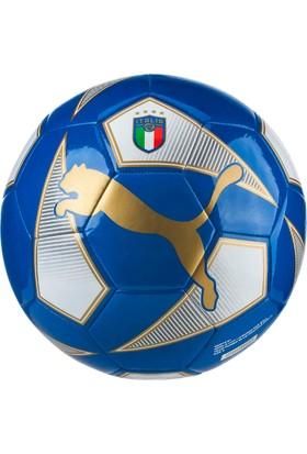 Puma World Cup Licensed Fan Te İndigo Futbol Topu