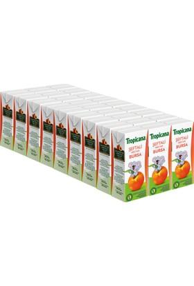 Tropicana Bursa Şeftali Meyve Suyu 27 x 200 ml