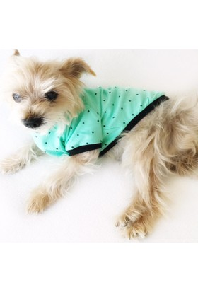 Kemique Green Dots Oval Yaka Tişört Summer T By Köpek Elbisesi