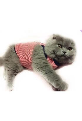 Kemique Nautıca Red Atlet By Kedi Elbisesi