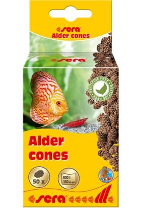 Sera Alder Cones Kızılağaç Kozalağı (50 Adet)