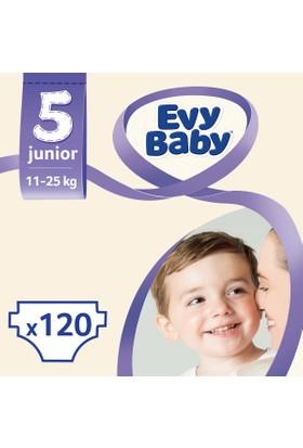 Evy Baby Bebek Bezi 5 Beden Junior Aylık Fırsat Paketi 120 Adet