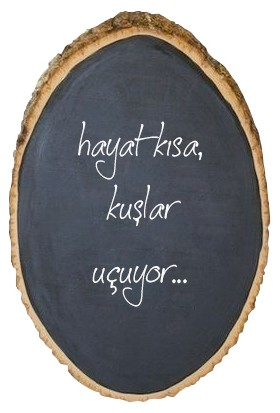 Design19 Write Dilim Karatahta
