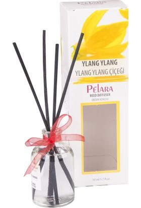 Pelara Ylang Ylang Bambu Ortam Oda Kokusu 50 ml