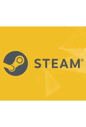 Steam 5 TL Değerinde Cüzdan Kodu