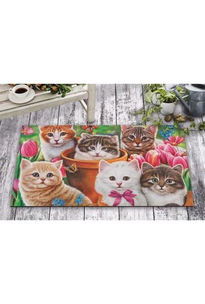 Olunca Olunca Şaşkın Kediler Tasarım Kapı Önü ve Ev İçi Paspas 45x75 cm