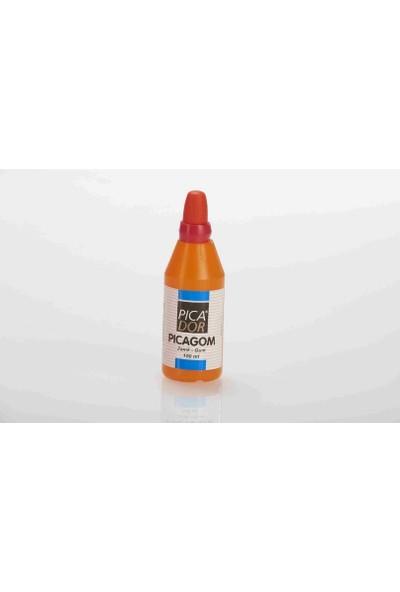 Picagom Yapıştırıcı Zamk 100Cc