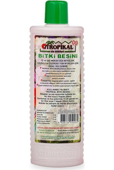 Tropikal Bitki Besini (12 adet)