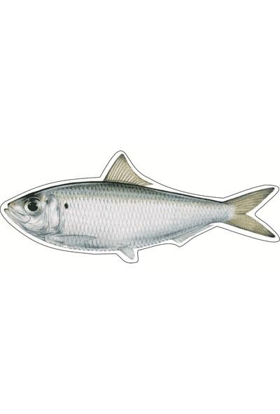 İstisna Balık Serisi Kitap Ayracı 4.