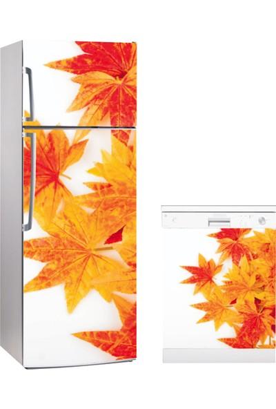 Buzdolabı Bulaşık Makinası Kombin Sticker