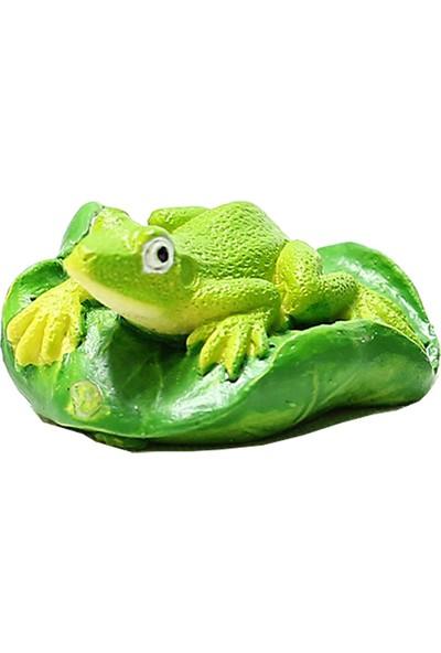 Teraryumal Teraryum Malzemeleri Kurbağa Açık Yeşil