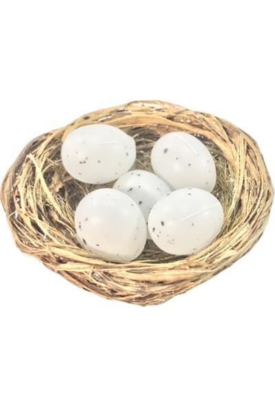 Teraryumal Teraryum Malzemeleri Kuş Yuvası ve Yumurta Seti