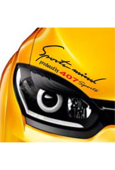 Mtm Peugeot 407 Sports Mind Far Üstü Oto Sticker