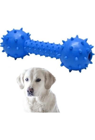 Ans Sesli Dikenli Dambıl Köpek Oyuncağı 14 Cm Mavi