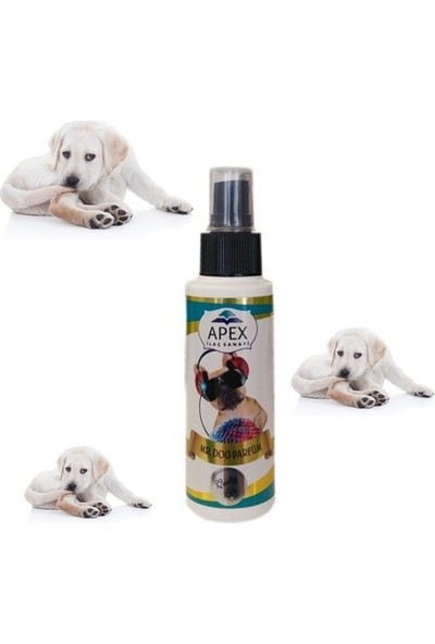 Andis Apex Erkek Köpek Parfümü 100 Ml