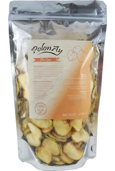 Polonay Elma Cipsi 100 gr