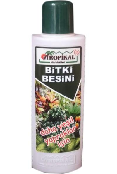 Yalova Fidan Market Tropikal Bitki Besini Daha Yeşil Yapraklar İçin 225 Ml
